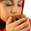 Stock Photo: Chestnuts of Christmas