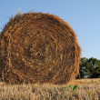 Hay bale in country sunset — Stock Photo