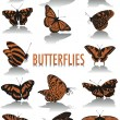 Butterflies silhouettes — Stock Vector