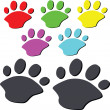 Bear paw — Stock Photo #5974547