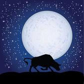 Black bull in the moonlight — Stock Photo