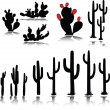 Cactus vector silhouettes — Stock Photo