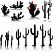 Cactus vector silhouettes — Stock Photo #6367643