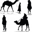 Camel in action vector silhouettes — Stock Photo #6367645
