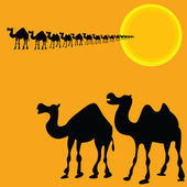 Camels illustration vector silhouettes — Stock Photo