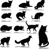 Cat vector silhouettes — Stock Photo