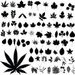 Marijuana plants vector silhouettes - Stock Photo