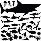 Fish vector silhouettes — Stock Photo