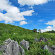 Karst plateau — Stock Photo