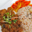 Malay vegetarian rendang chicken or mutton rice — Stock Photo #5840951