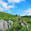 Vast karst plateau — Stock Photo