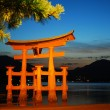 Torii gate of a temple during sunset — Stock Photo