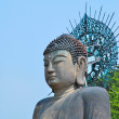 Majestic buddha statue — Stock Photo