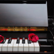 Two red roses on piano keyboard — Stock Photo #5847038