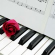Red rose and music score on piano keyboard — Foto Stock