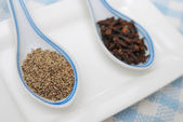 Spices and seasoning as food ingredients — Stock Photo