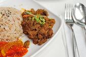Malay vegetarian rendang chicken or mutton rice — Stock Photo