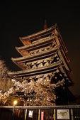 Nocny widok na majestatyczny pagoda — Zdjęcie stockowe