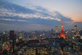 Cityscape view of metropolitan Tokyo city at dusk — Stock Photo