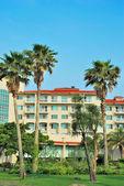 熱帯の椰子の木と豪華なリゾート — ストック写真