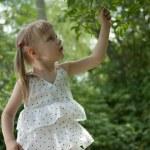 Girl in white dress picking fruit — Stock Photo #6106157
