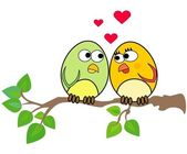 Birdies in love — Stock Photo
