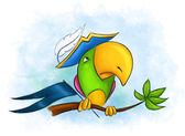 Pirate parrot — Stock Photo