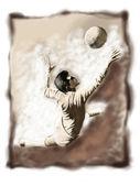 Football or soccer 01 — Stock Photo