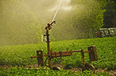 Watering the Fields — Stock Photo