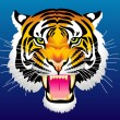 Royalty-Free Stock Vector Image: Head of tiger