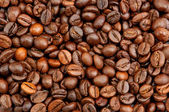 Brown coffee beans background — Stock Photo