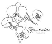 Branch of orchids — Stock Vector