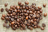 Coffee beans on the burlap — Stock Photo