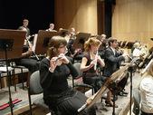 Symphonic Concert — Stock Photo
