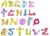 Letters of cat alphabet — Stock Photo