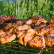 The prepared tasty meat in lattice - Stock Photo