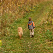 Little Boy and Dog walking outdoor — Stock Photo