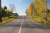Asphalt road early in the morning among autumn trees and foliage — Stock Photo