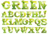 Green alphabet — Stock Vector