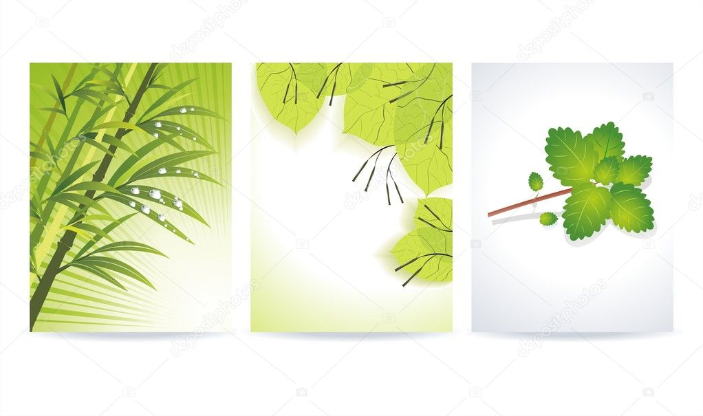 Abstract colorful banner set designs with green leaf  Stock Vector #6156095