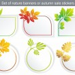 Vector natural stickers — Stock Vector
