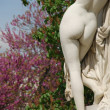 Female statue back — Stock Photo