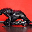 Zentai Theatre — Stock Photo #5832085