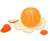 Peeled orange — Stock Vector