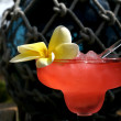 Island Drink — Stock Photo