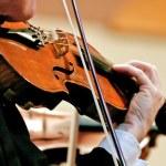 Symphony Violin — Stock Photo