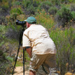 Stock Photo: Wildlife photographer