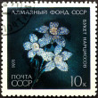 Postal stamp. Posy with narcissus, 1971 — 图库照片 #6614836
