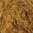 Straw Close Up — Stock Photo