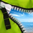 Stock Photo: Green Zipper